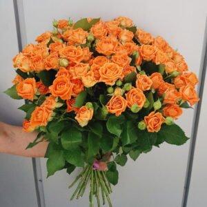 Ярко оранжевая кустовая роза