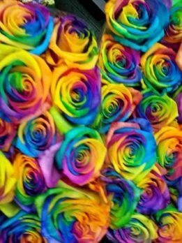 радужная роза купитьхарьков бумагакрафт доставкахарьков