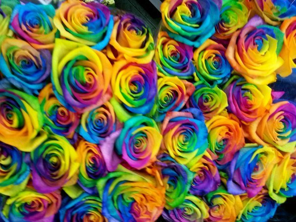 Цветы в коробках питер