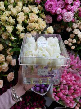 Куб из 9-ти пиновидных тюльпанов