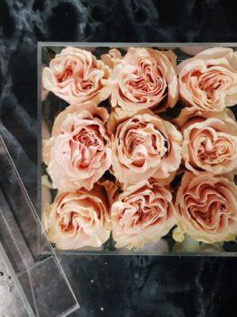 Стеклянный бокс из 9-ти пионовидных роз