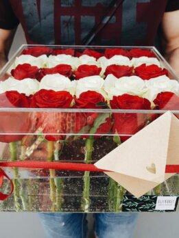 Прозрачный бокс с белыми и красными розами.