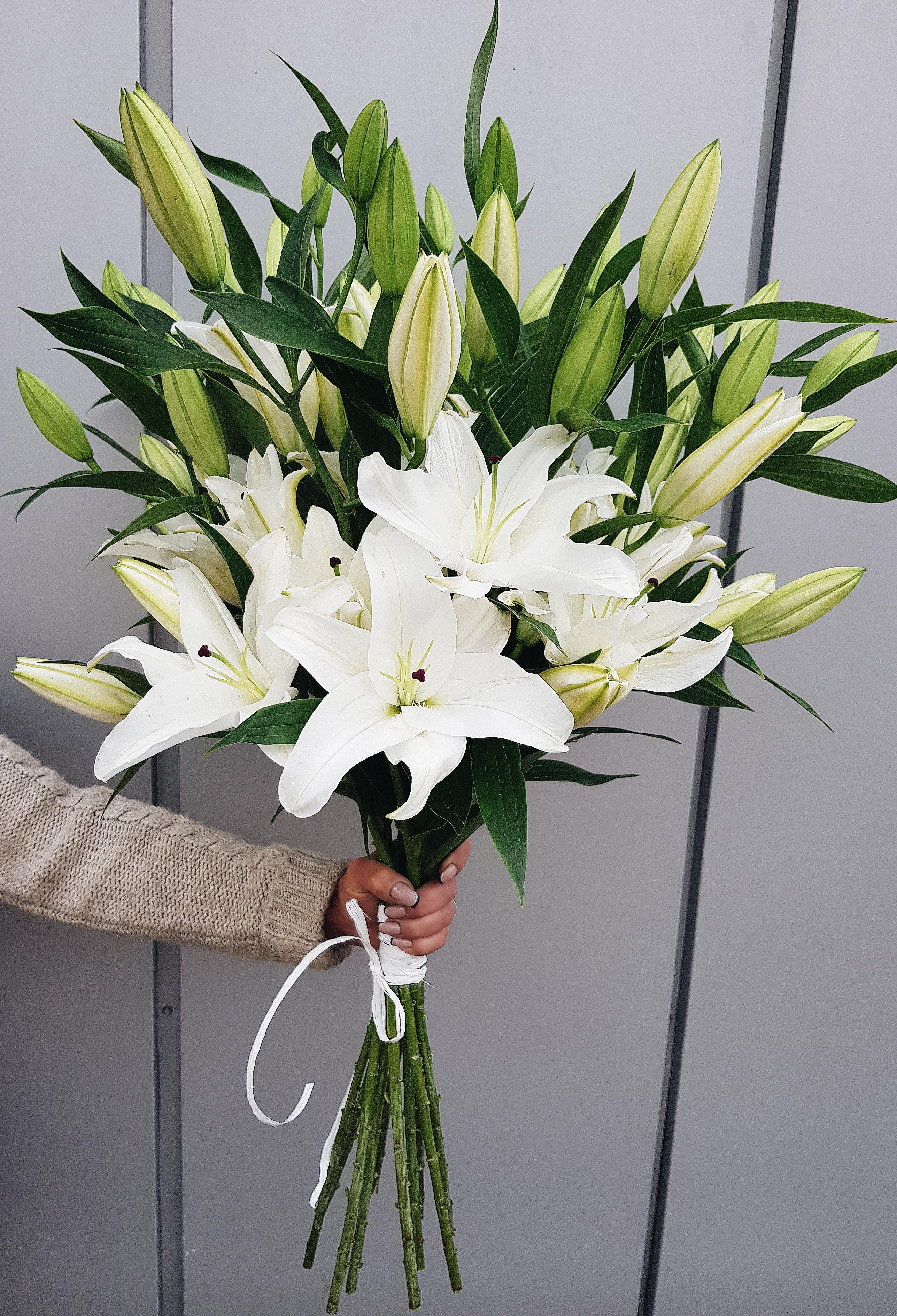 отличный картинки шикарные букеты белых лилий также утверждал